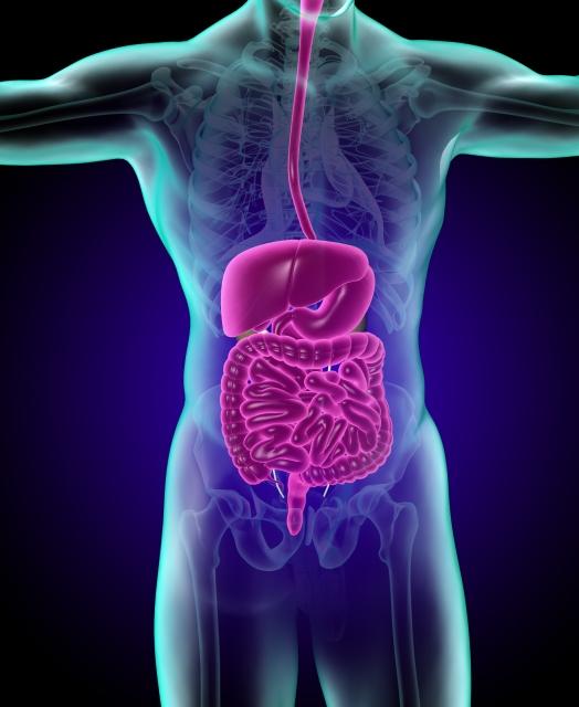 痔瘻、潰瘍性大腸炎、クローン病とは?下痢から吹き出物、血便、腹痛。10年治療体験ブログ